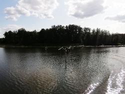 Auf 5 Seen übers Wasser_79