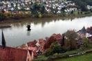Teufel im Neckar_1