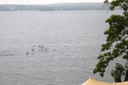 Ascheberg am Plöner See