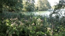 Am Haussee - Tag 1_18