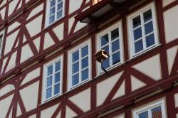 Rotenburg Tag 1_10