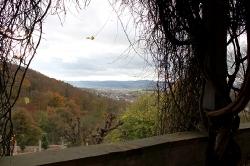 Altenstein_16