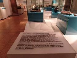 Im Landesmuseum_4